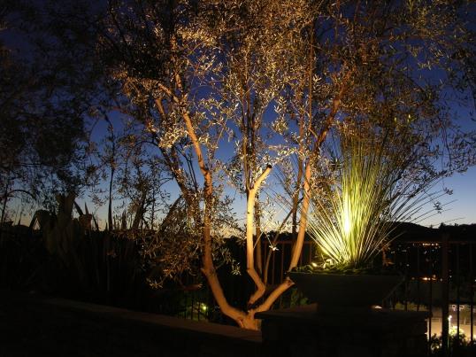DRAMATIC LIGHTING by GREEN MAGIC